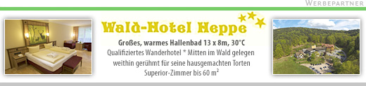 Wald-Hotel Heppe in Dammbach